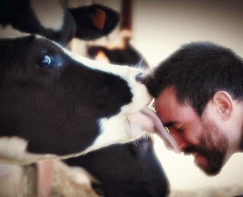 Komoly előrelépés az állatjólét terén